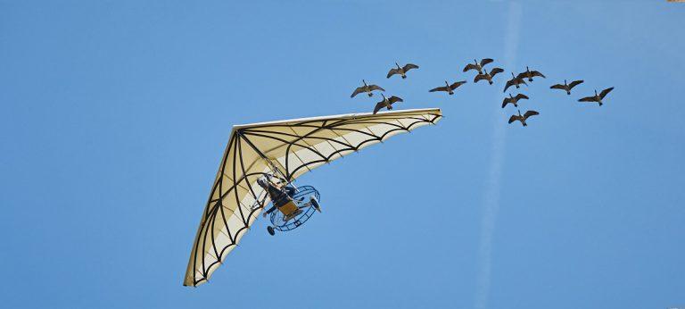 bal-oiseaux-fantomes-puy-du-fou