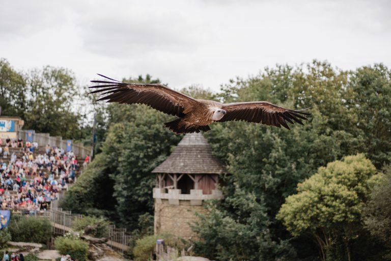 Grand Parc du Puy du fou 2020